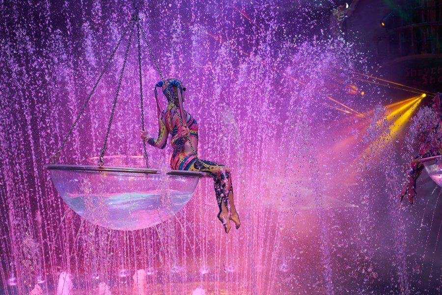 Цирк на воде Шевченко-Шоу в Сочи